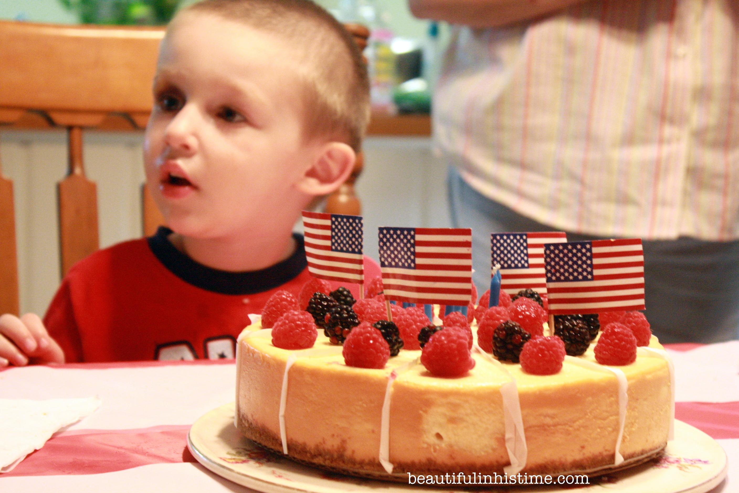 A Birthday Party for America! #birthday #america #4thofjuly #independenceday #party #birthdayparty #birthdaycake